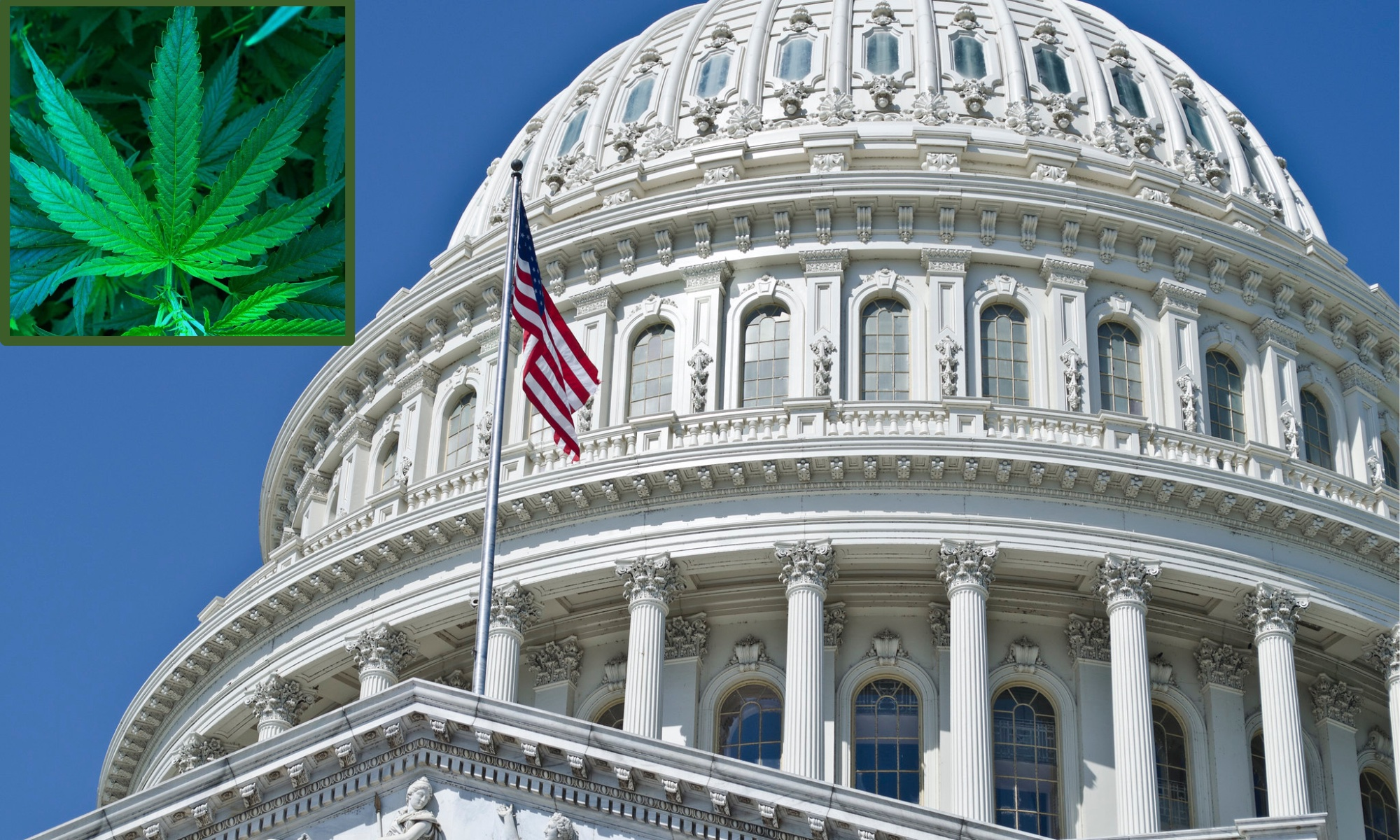 congress capitol marijuana