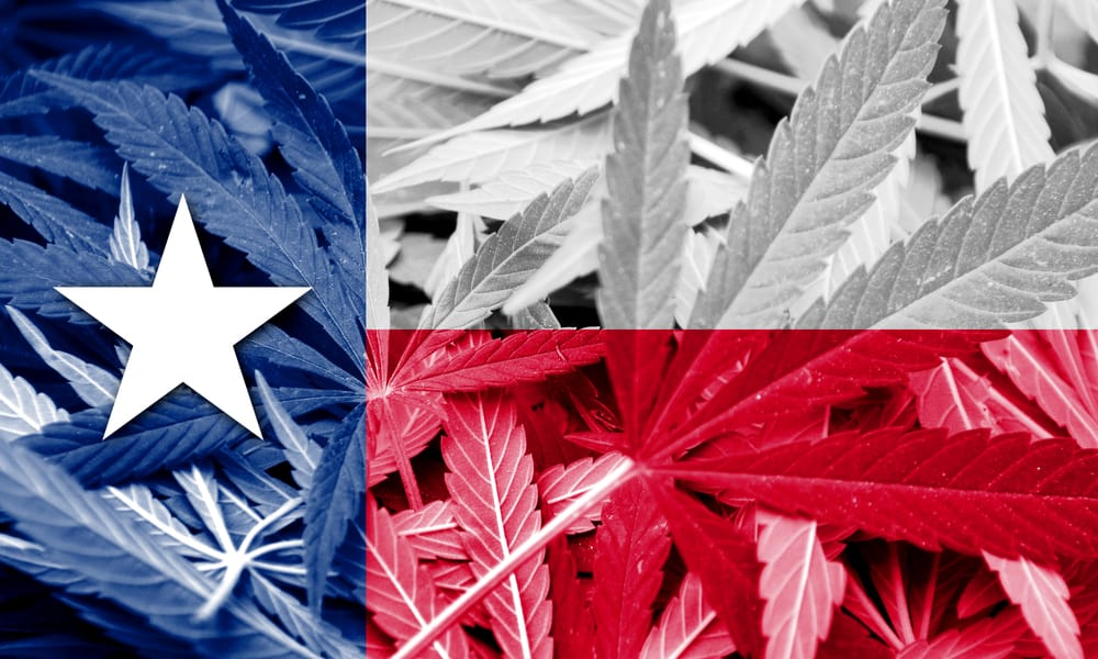 texas republicans come out support marijuana decriminalization hero
